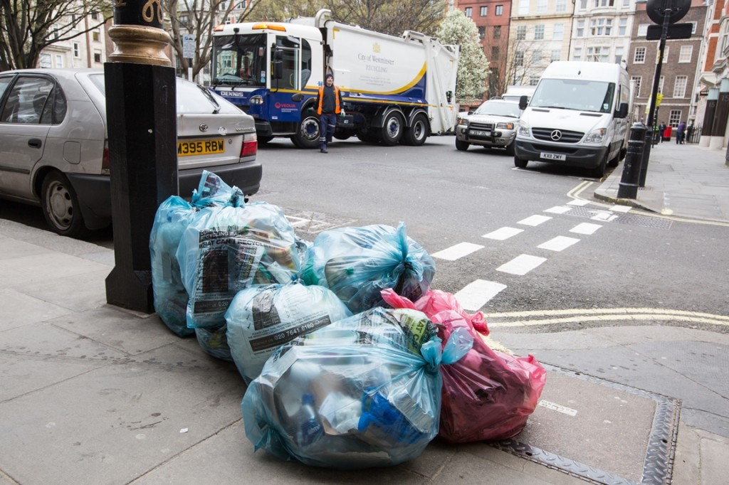 Daily  Recycling Collection Expansion