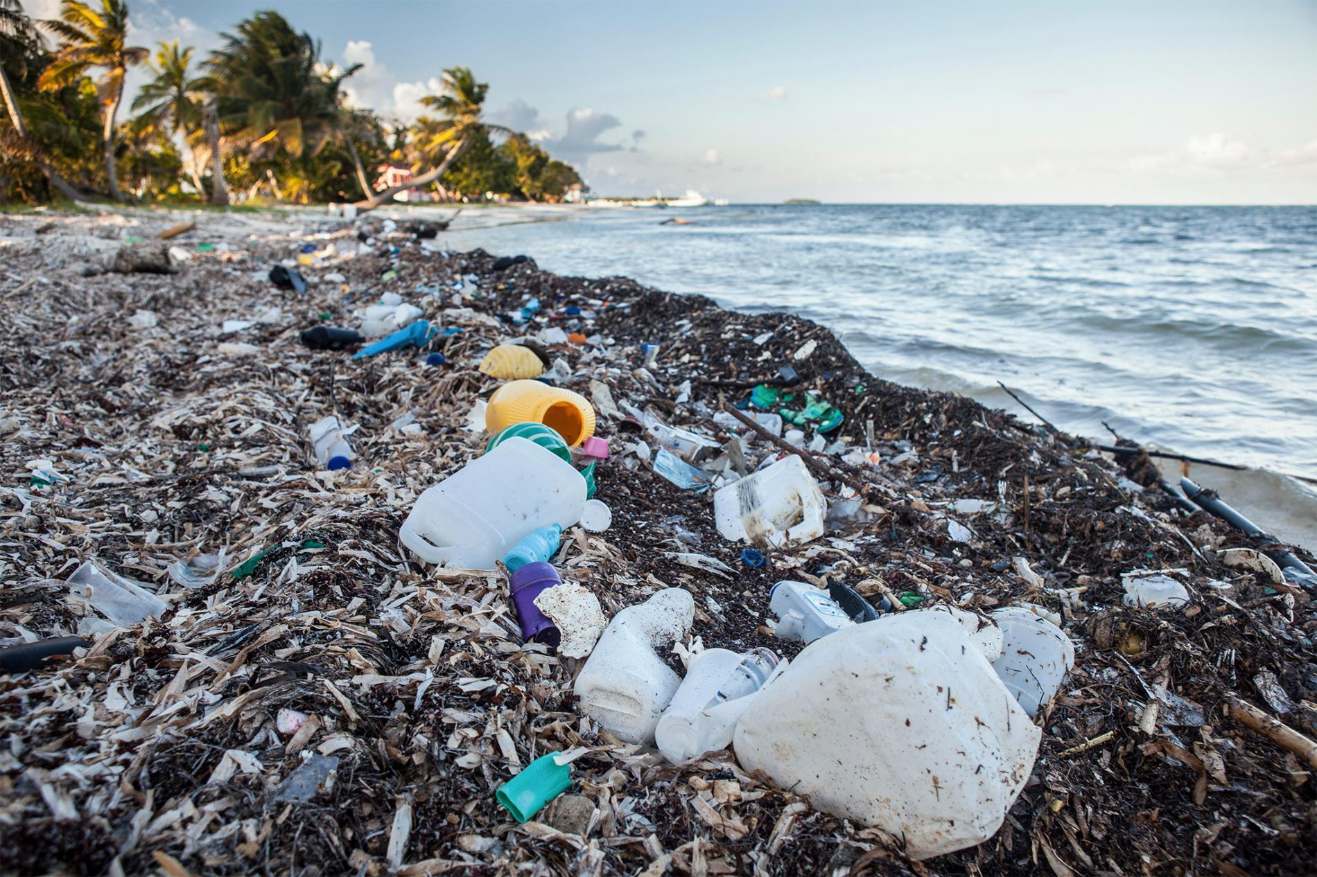 how much plastic waste ends up in the ocean