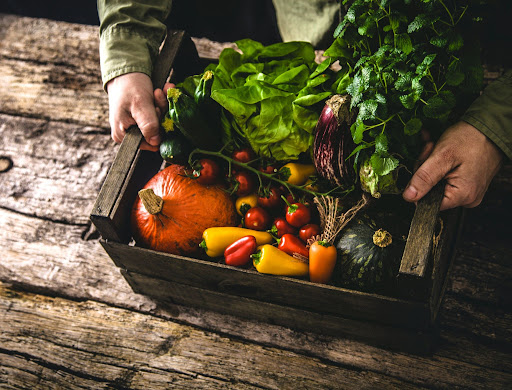 Food waste recycling during organic september